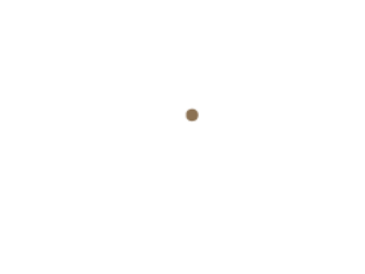 Point Publishing
